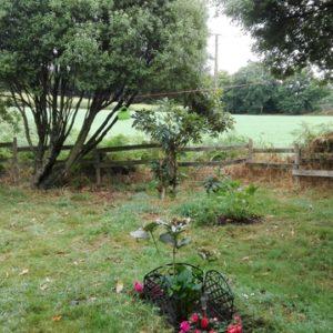 trouver la place dans le jardin